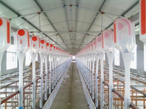 自动化养殖设备
